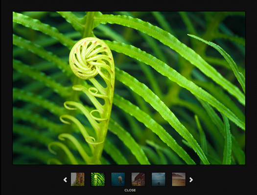 Samrt Gallery: jQuery Image Gallery with Twelve Transition Effects