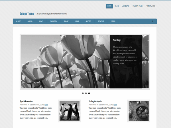 magazine-wordpress-themes